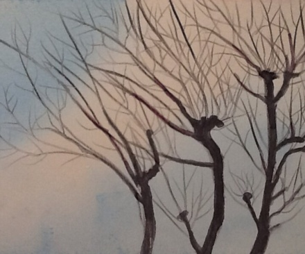 13th February 2014, silhouettes of pollarded ash.