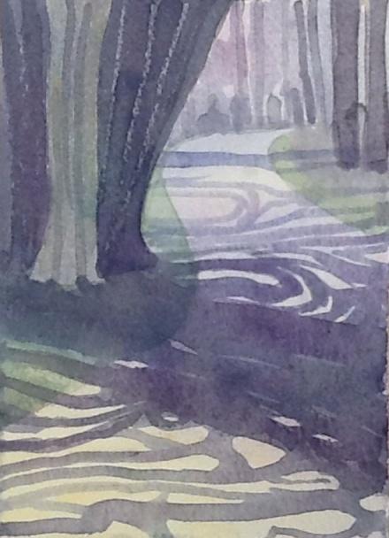 Swirly shadows on the path