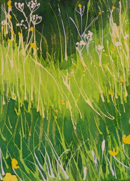 Buttercups in the long grass