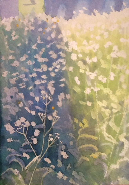 Light and shade on the last of the cow parsley
